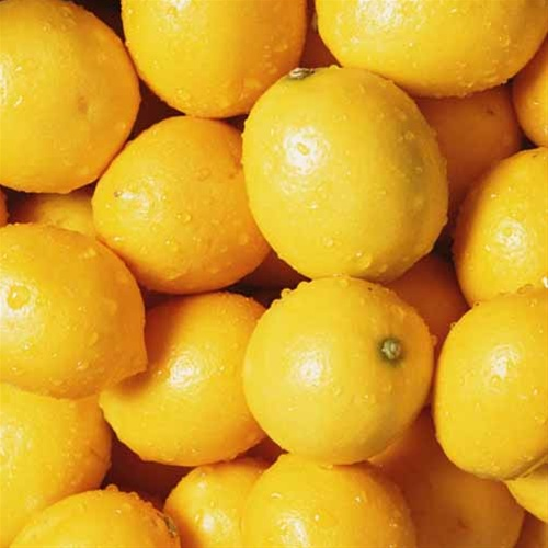 Lemon - Limbu