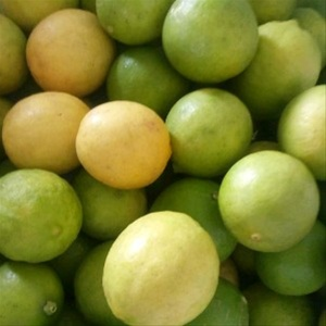 Lemon - Lemon(Limbu)